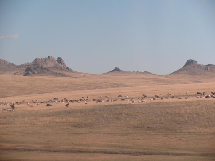 Gobi çölünün yakınları