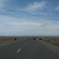 Genel olarak Moğolistan