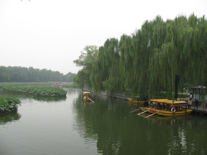Behia parkı