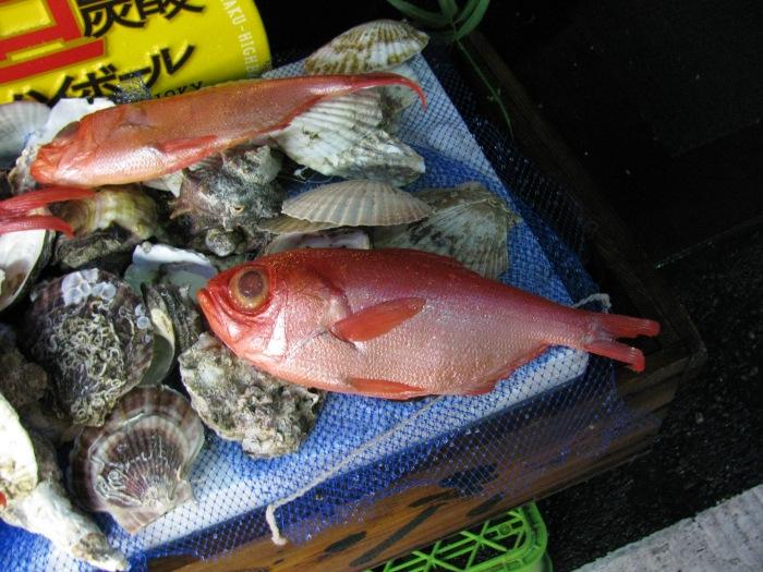Tsukiju balık pazarı