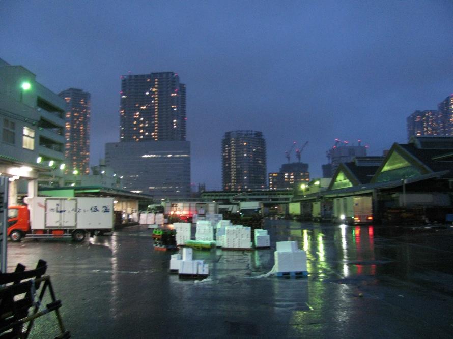 Tsukiji balık pazarı
