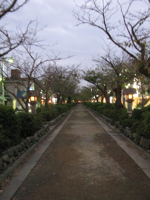 Wakamiya-ohji caddesi