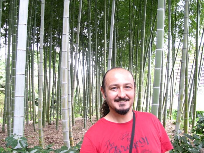 Bambu koruluğu ve ben