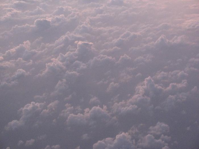 Bulut