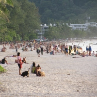 Phuket Adası (Tayland) 1-2/11/2014