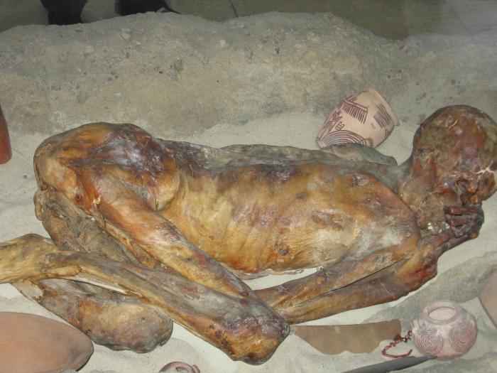firavun mumyası