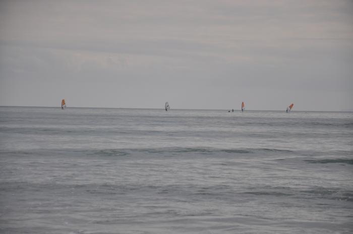 sörfçüler