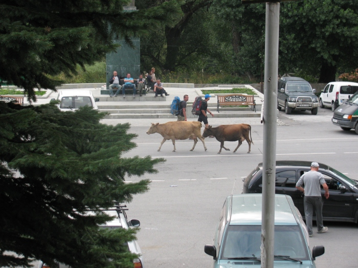 Kazbegi'de herkes serbest